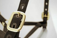 "Dental Halter with rope & cleat (size ""horse"")"